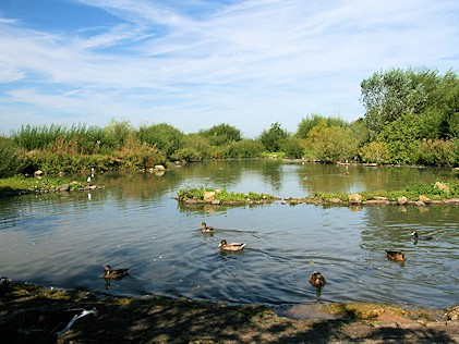 Tundra Zone - Slimbridge